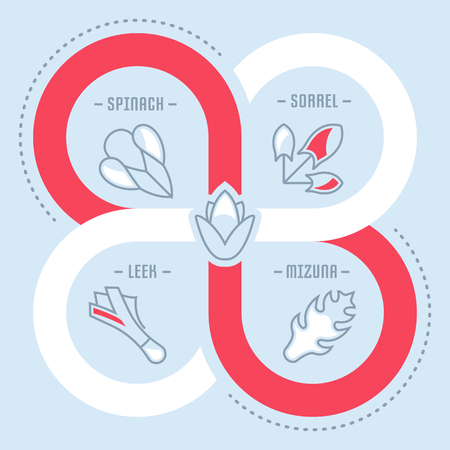 Line illustration of spices and seasonings. 일러스트