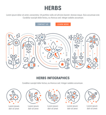 Line illustration of herbs. Concept for web banners and printed materials. Template with buttons for website banner and landing page.