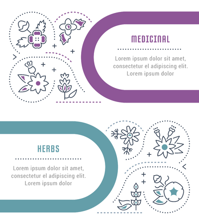 Line illustration of medicinal herbs. Concept for web banners and printed materials. Template for website banner and landing page.