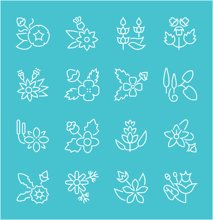 Collection of line white icons of herbs. Set of vector simple elements with bold outlines on a color background. Info graphics signs and pictograms. Vettoriali