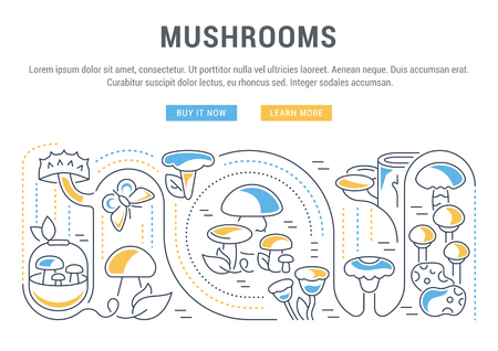 Line illustration of mushrooms. Concept for web banners and printed materials. Template with buttons for website banner and landing page.