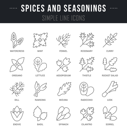 Set of outline signs and symbols of spices and seasonings with names. Collection vector thin line icons and infographics elements. Simple linear pictogram pack for web graphics and apps. Stockfoto - 99294621