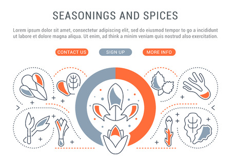 Line illustration of seasonings and spices. Concept for web banners and printed materials. Template with buttons for website banner and landing page.