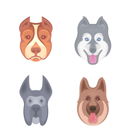 Vector illustration of Labrador-Retriever, Siberian Husky, Pitbull, German Shepherd and Great Dane. Stickers and Logos for Pet Shops, Animal Shelters, Dog Show, and others. Vettoriali