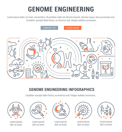 Line banner of genome engineering. Vector illustration of the process creating the genetically modified organism.