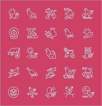 Collection of line white icons of food labels. Set of vector simple elements with bold outlines on a color background. Info graphics signs and pictograms.