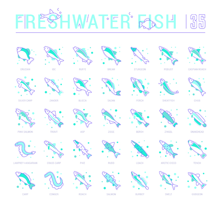 Collection of vector flat icons with thin line elements of freshwater fish. Set of clean design, and outline signs. Simple linear infographics and pictograms pack for web graphics and apps. Çizim