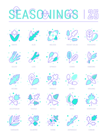 Collection of vector flat icons with thin line elements of spices and seasonings. Set of clean design, and outline signs. Simple linear infographics and pictograms pack for web graphics and apps. Illustration
