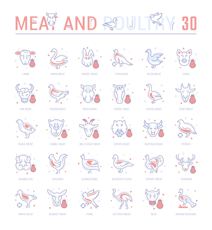 Collection of vector flat icons with thin line elements of meat and poultry. Set of clean design, and outline signs. Simple linear infographics and pictograms pack for web graphics and apps.