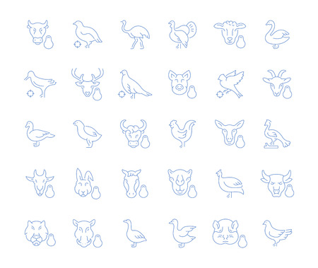 Set of vector line icons, sign and symbols of meat and poultry for modern concepts, web and apps. Collection of infographics elements, logos and pictograms.
