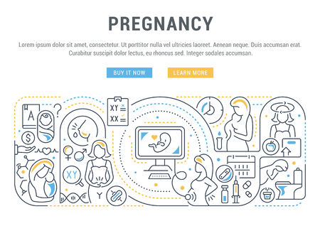 Vector illustration of the pregnancy.