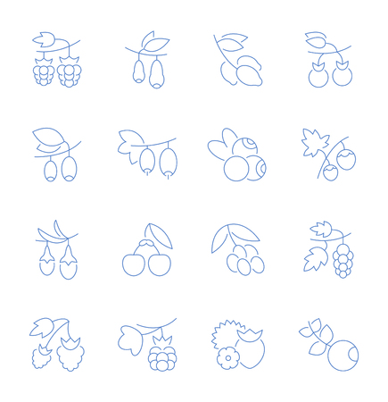 Set of vector line icons, sign and symbols of berries for modern concepts, web and apps. Collection of infographics elements, logos and pictograms.