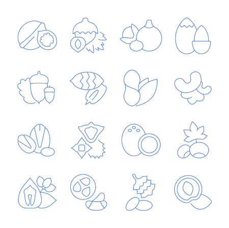 Set vector line icons, sign and symbols in flat design nuts with elements for mobile concepts and web apps. Collection modern infographic logo and pictogram. Illustration