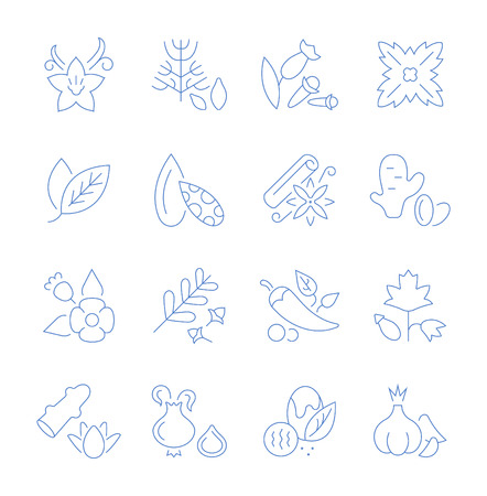 Set of vector line icons, sign and symbols of spices for modern concepts, web and apps. Collection of infographics elements, logos and pictograms. Ilustração