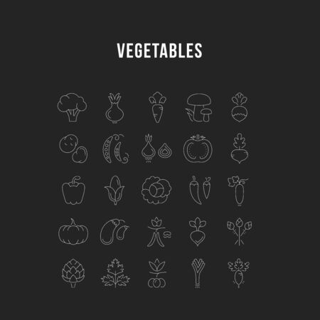 Set vector line icons in flat design Vegetables and Healthy food with elements for mobile concepts and web apps. Collection modern infographic  and pictogram. Illustration