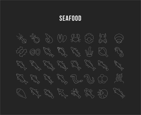 Set of vector line icons, sign and symbols of seafood for modern concepts, web and apps. Collection of infographics elements, and pictograms.
