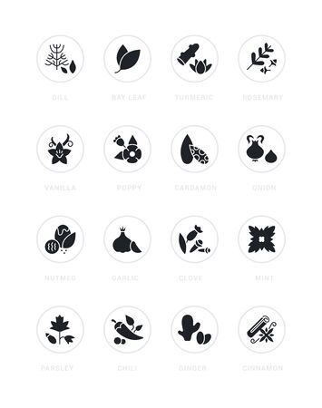 Collection simple icons of spices on a white background with names. Modern black and white signs for websites, mobile apps, and concepts