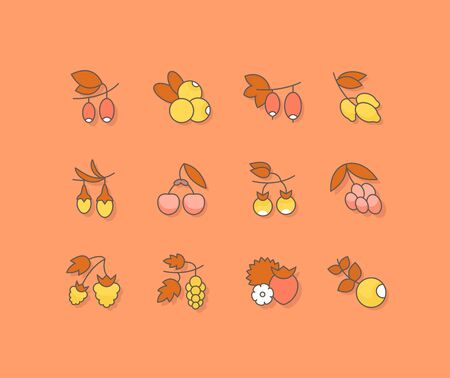 Collection simple icons of berries on an orange background. Modern color signs for websites, mobile apps, and concepts