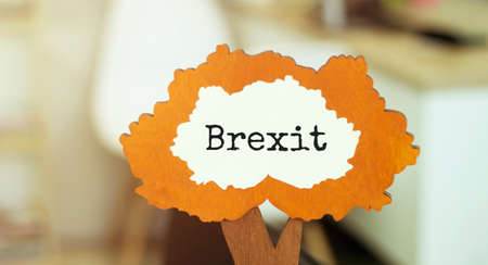 figure of a tree with text BREXIT inside the foliage. Business concept