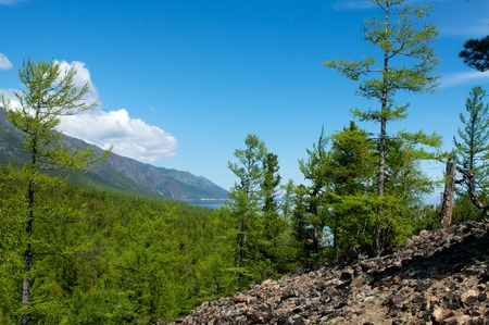 Baikal landscape with green spring forest, Russia. Siberia Stock Photo