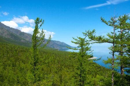 cedro: Montañas en el cielo azul del lago Baikal, el día de sol