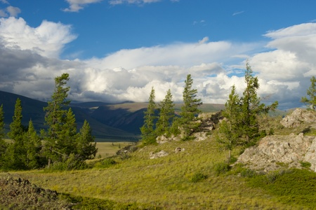the pampas: Beautiful sunny valley between the mountains with lush clouds in the Altai Republic