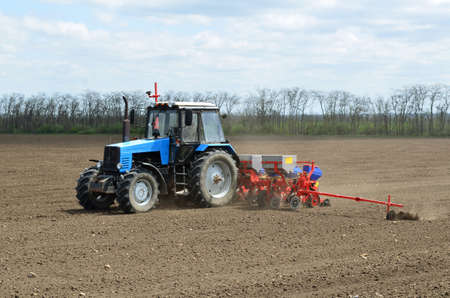 spring sowing in the field photo