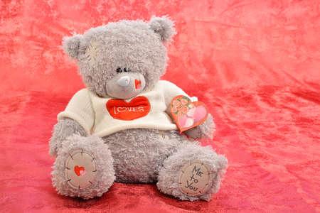 teddy bear on a red  photo