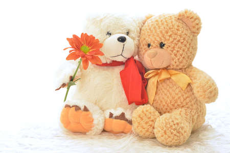 Two teddy bears with flower  photo
