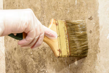 Application by brush glue on the wall for gluing wallpaper Reklamní fotografie