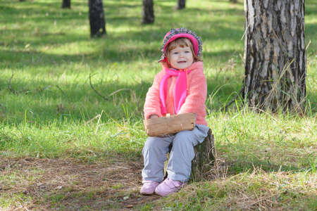 little girl sitting on a stump in the woods with a basket photo