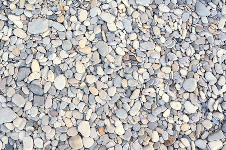 sea stone on the shore Reklamní fotografie