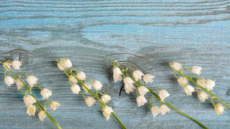 lilies of the valley lie on a wooden surface of blue color