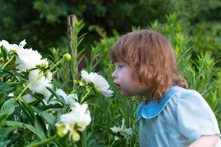 odour: little girl smelling a flower Stock Photo