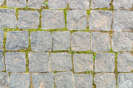 grey stone background from old square paver bricks and green grass between them for designs.
