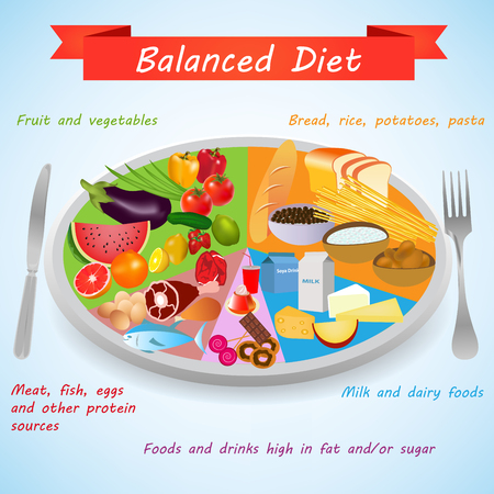 Food pyramid. Food on a plate for a healthy and balanced diet. Healthy foods infographics elements Illustration