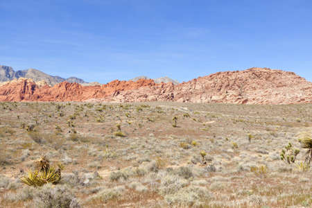 View of dry landscape and red rock formations of the Mojave Desert.. Stock Photo