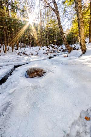 Winter landscape Archivio Fotografico