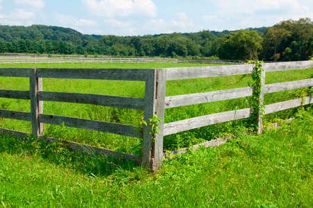 farmland: Farmland