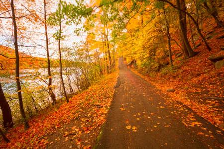 fall colors: Fall landscape