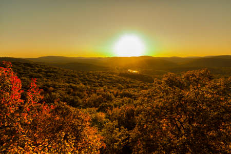 Foresty landscape at sunset photo