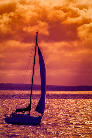 Silhouette of the sailing boat at sunset