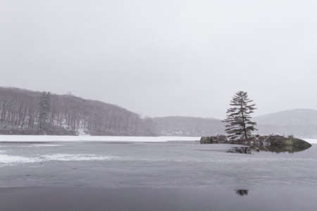 frozen lake: Beautiful view of the frozen forest lake in the winter.