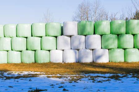 hayroll: Hay bales stored on a farmland.