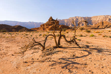 View of Timna Valley in Israeli Negev Desert. Stock Photo
