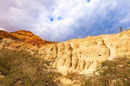 israeli: Ein Gedi Nature Reserve in Israel. Stock Photo