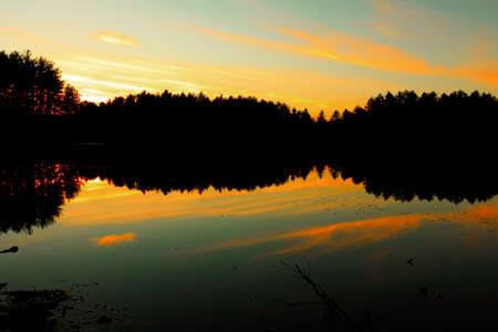 early summer: Sunset on a forest lake.