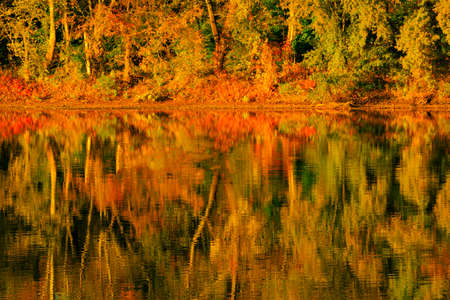 Fall landscape with the forest lake.