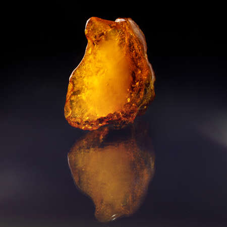 A unique piece of solar amber on a black background.