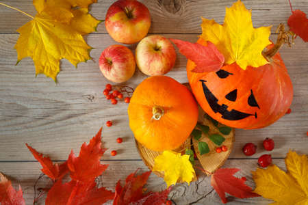 Funny autumn still life with halloween pumpkin on wooden background
